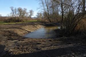 Anlage von Kleingewässern